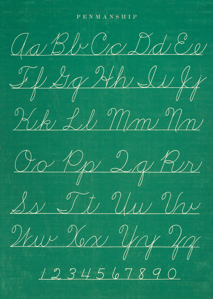 Decorative Paper - Cursive Penmanship