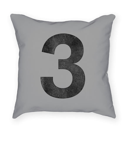 Akzidenz 3 Grey Pillow