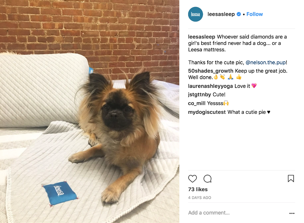 17 User-Generated Content Examples And 5 Tactics To Grow $15M+ In Annual Sales