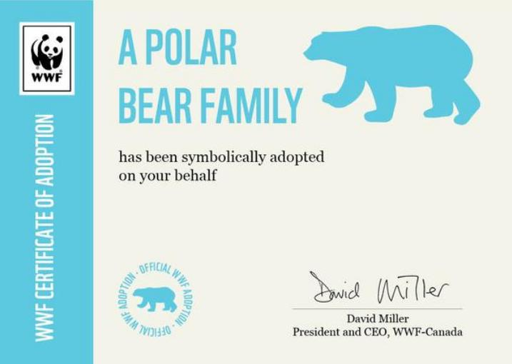 How World Wildlife Fund Canada Uses Shopify Plus To Protect The Polar Bears