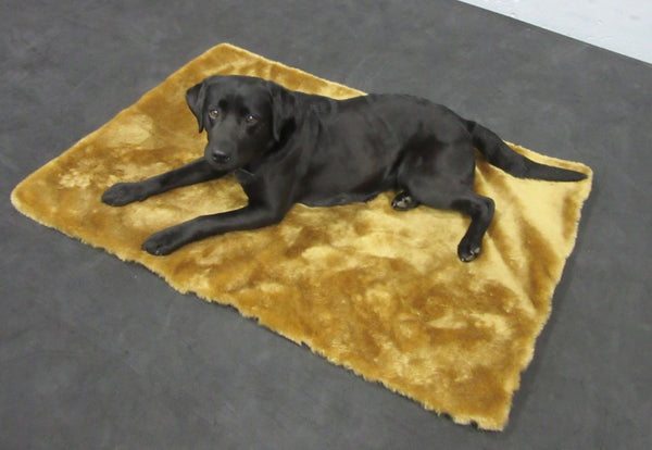 DermaSaver® Orthopedic Dog Bed Pad