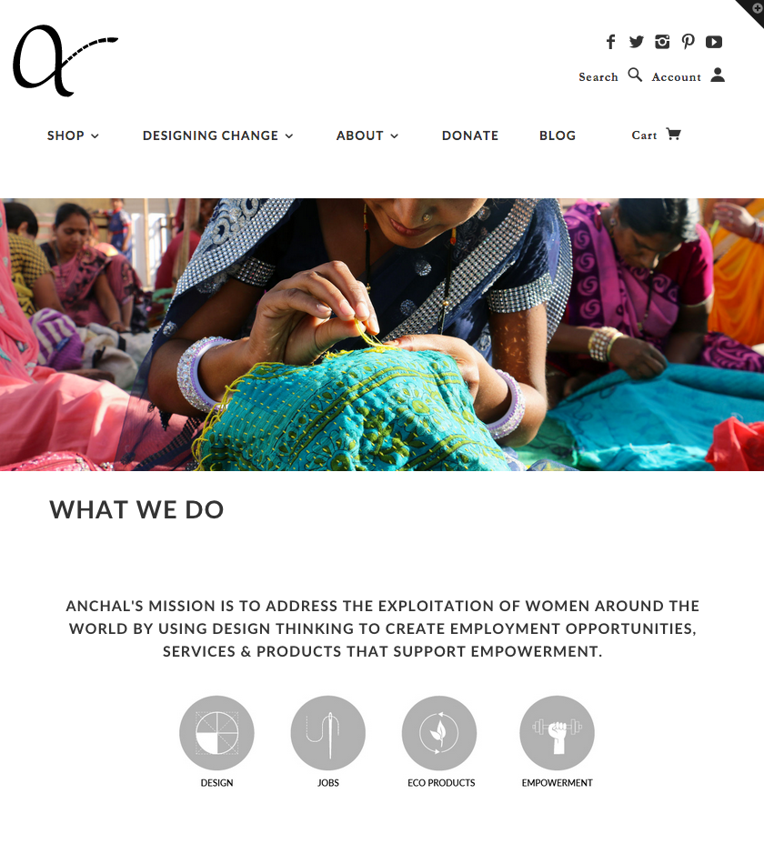 Anchal Project - What We Do
