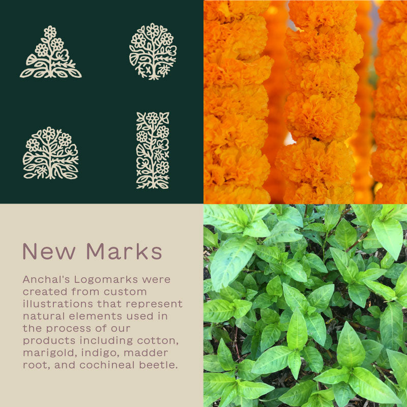 New logo marks inspired by the plant material used to create our products like marigold flowers and organic cotton