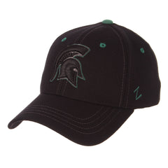 Michigan State Black Element