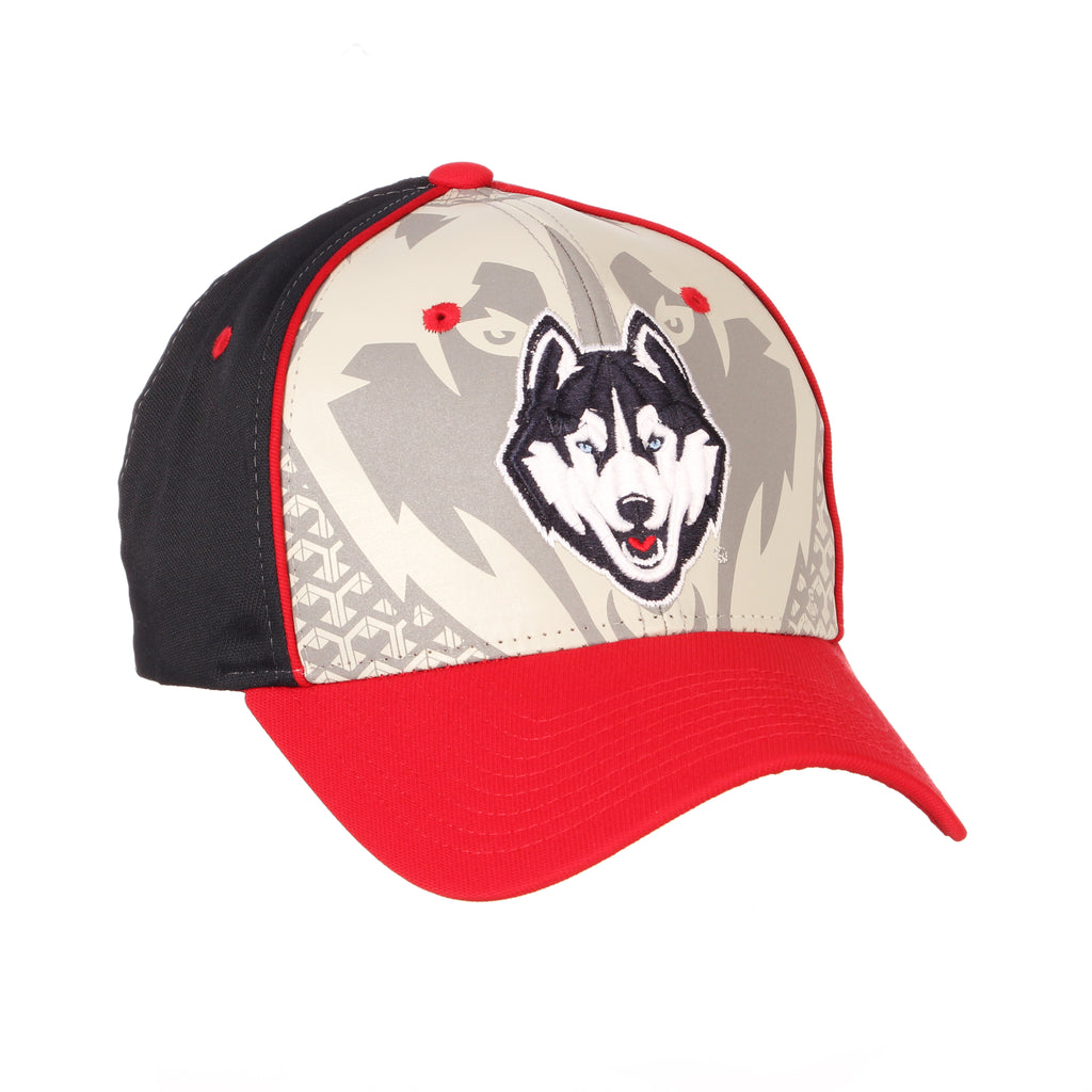 Connecticut (UCONN) Reflector