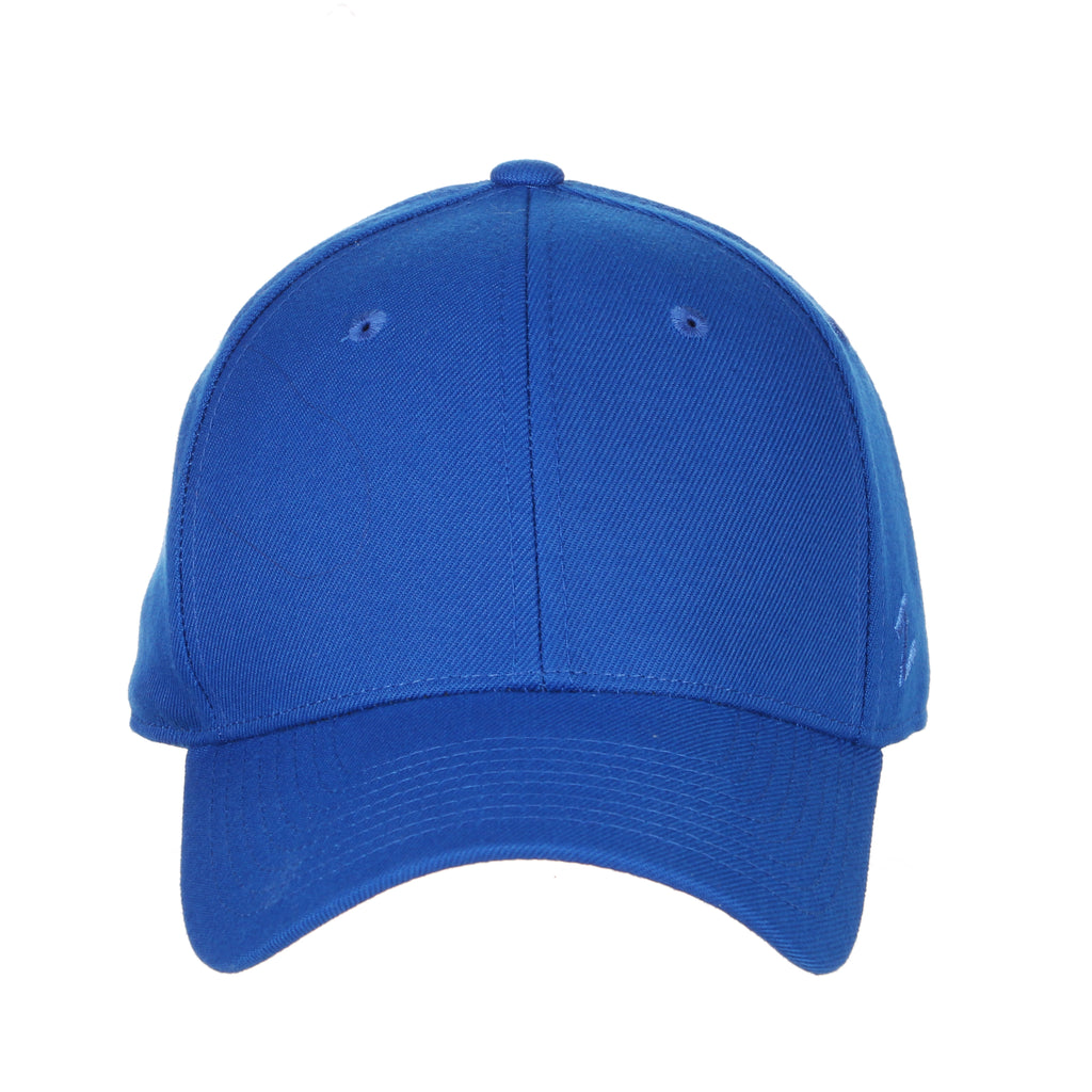 Blank Royal Blue DH Fitted