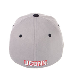 Connecticut (UCONN) ZH