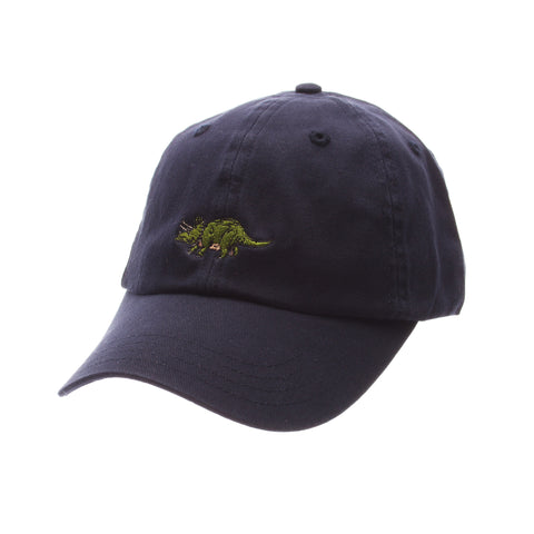 Hula Dad Hat