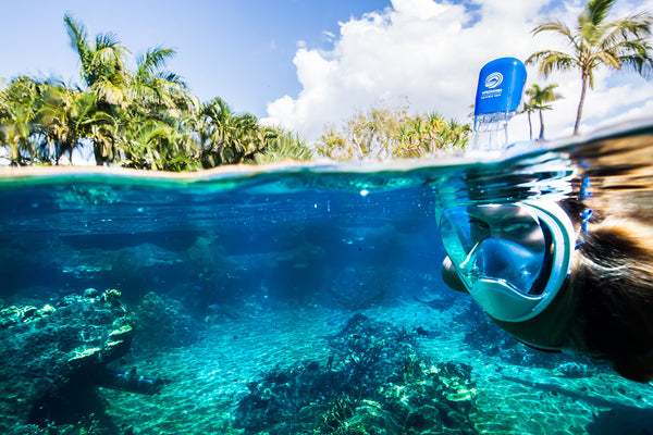 Top 5 Snorkeling Destinations For Every Traveler