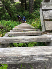 West Coast Trail Ladders