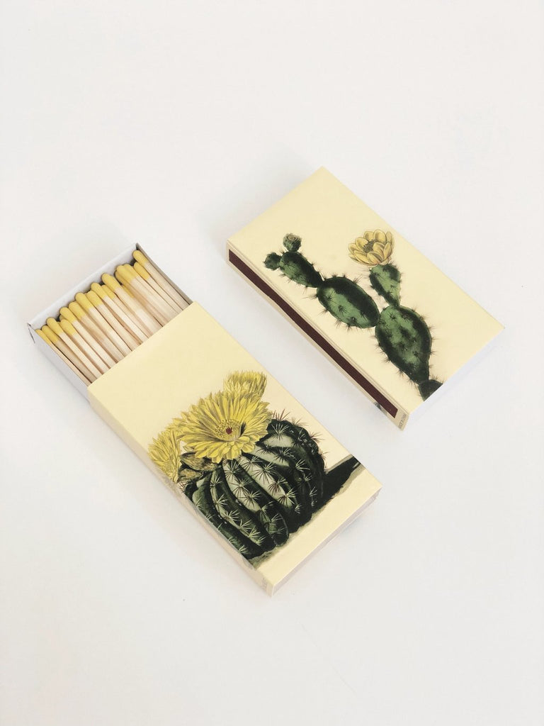 Cactus Decorative Matches
