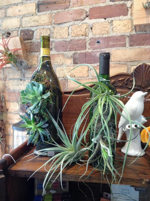 Tablescaping: Decorating with wine bottles and air plants