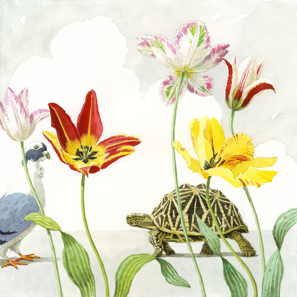 giclee print by Harrison Howard dove with turtle & tulips