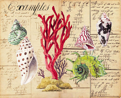 giclee print by Harrison Howard green angaria, red coral & shells on old calligraphy