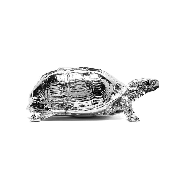 Turtle Jewellery Box - Coveted Gifts - 3
