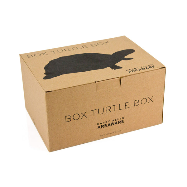 Turtle Jewellery Box - Coveted Gifts - 6