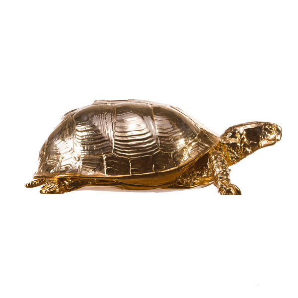 Turtle Jewellery Box - Coveted Gifts - 1