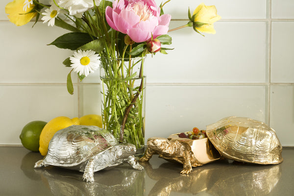 Turtle Jewellery Box - Coveted Gifts - 5