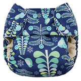 Blueberry One Size Simplex All in One- Organic with Stay Dry