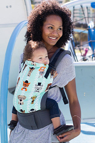 Tula Ergonomic Carrier- Clever