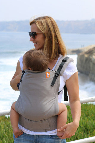 Buckle Carrier - Tula Ergonomic Carrier- Cloudy