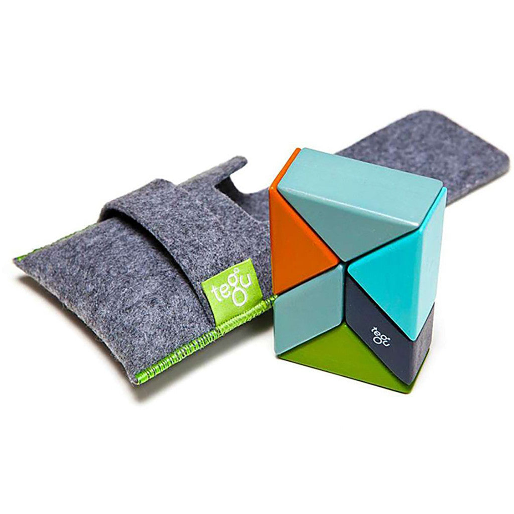 Tegu Pouch Prism- Nelson