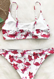 Flamingo printed split lady swimsuit sexy bikini