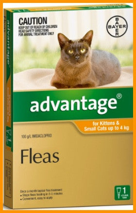 Advantage - Orange For Small - Cat UP TO 4KG