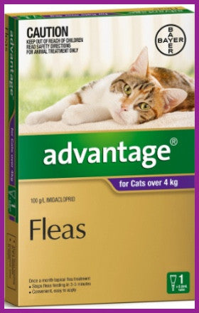 Advantage - Purple For Large Cat Over 4KG