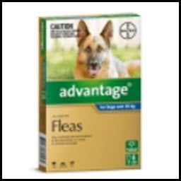 Advantage - Dog Extra Large  Blue FOR 25KG PLUS