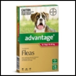 Advantage - Dog Large Red 10 - 25KG