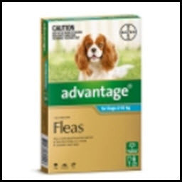 Advantage - Dog Medium Aqua 4 - 10KG