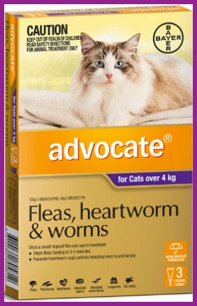 Advocate cat Purple 4KG PLUS