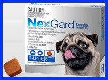 NexGard - For Dogs - Blue Small 4.1-10kg - 3 Pack