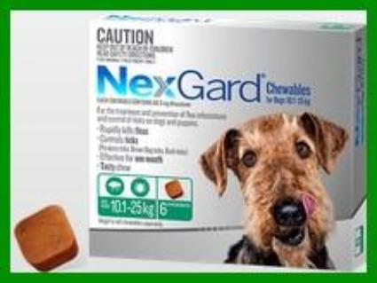 NexGard - For Dogs - Green Medium 10.1-25kg - 6 Pack