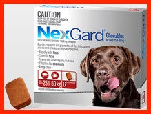 NexGard - For Dogs - Red Large 25.1-50kg - 3 Pack