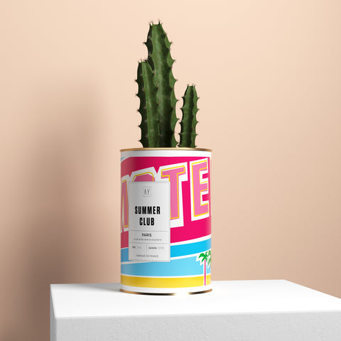 Collections a cactus for Motel one shampoo