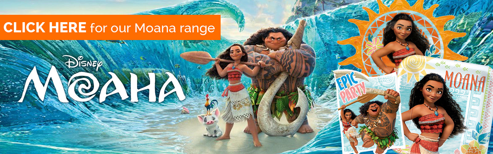 Moana Hawaiian Party theme NZ