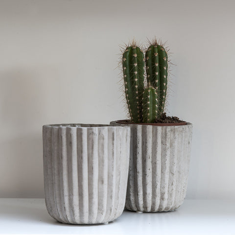 concrete planter cement plant pot