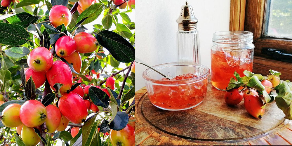 Crab Apple Jelly Recipe and image