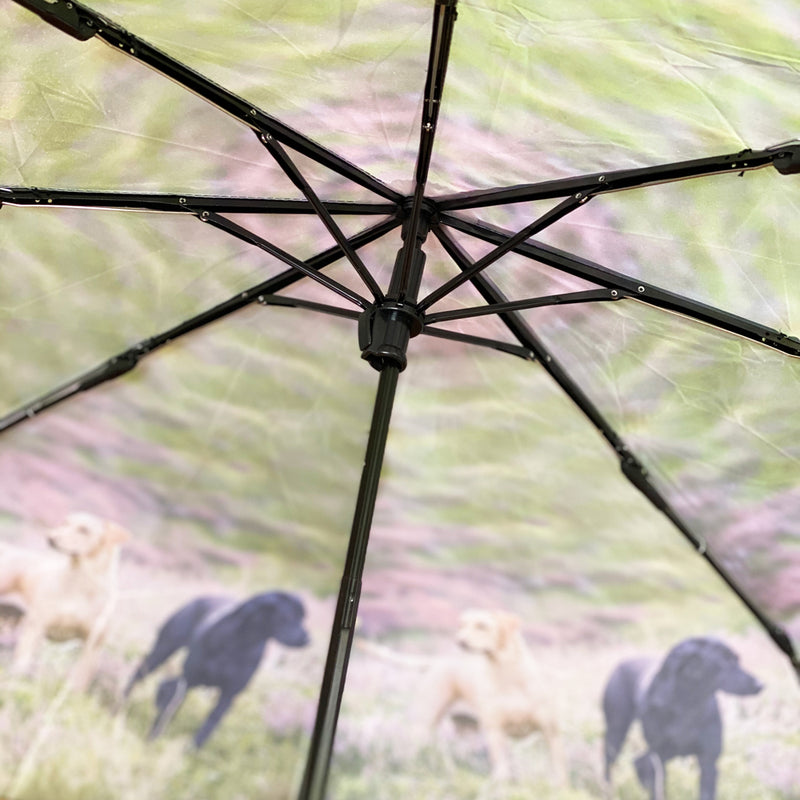 Country Matters Telescopic and Folding Umbrella - 'Two Labradors'