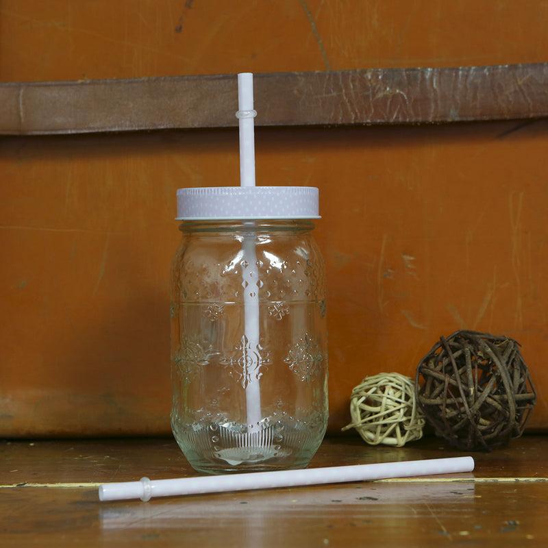 Parlane Glass retro jam jar style drinks jars with straws - Set of 6 - Lilac