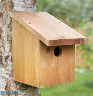 Tom Chambers Snoozy Wooden Bird Nest Box - 32mm Entrance