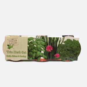 Indoor Flavours Gardening Terracotta Chalk Trio Herb Set - Basil, Chives & Parsley
