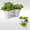 Keter Ivy Stackable Clover shaped Planter white/green