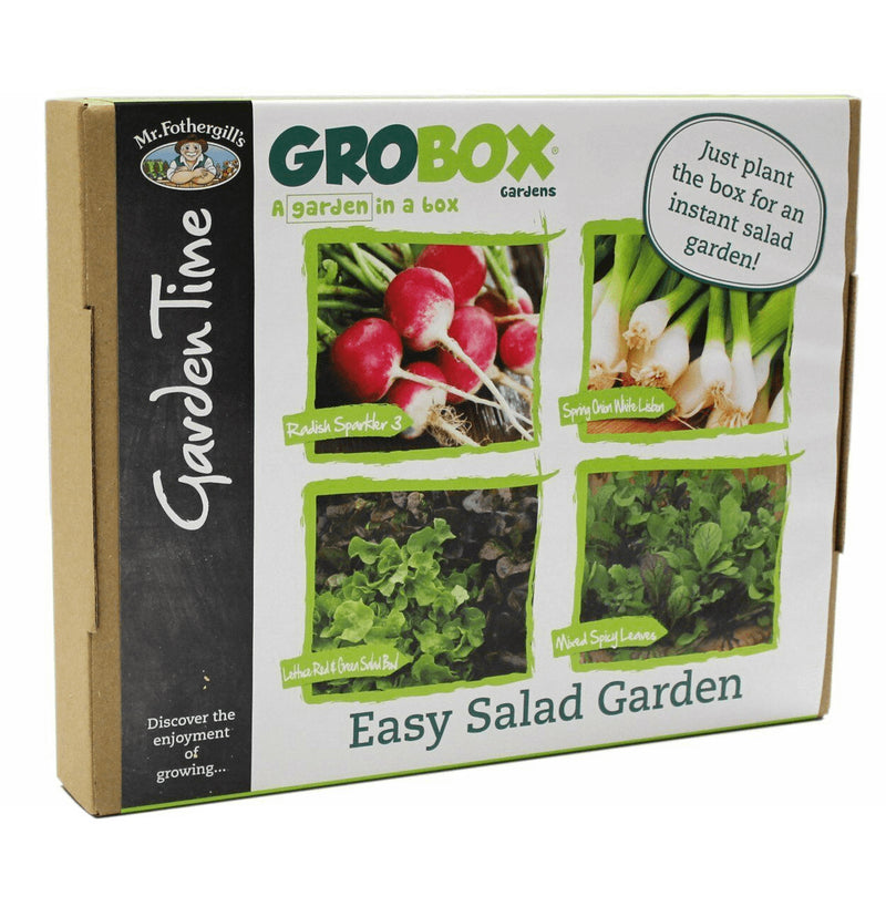 GroBox Garden Easy Salad - Radish, Spring Onions, Mixed Spicy Leaves & Lettuce