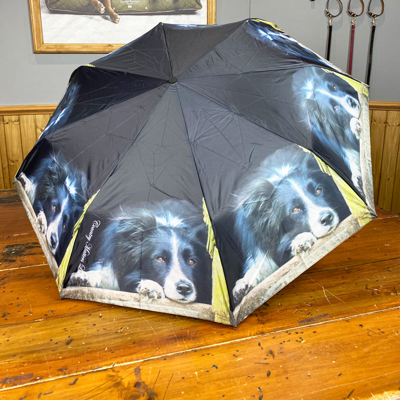 Country Matters Telescopic and Folding Umbrella - 'Collie Sheepdog'