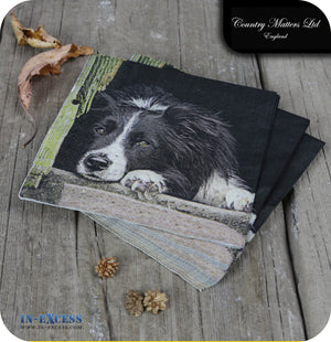 Country Matters Paper 3 Ply Napkins Pack of 20 - 'Collie Chill Out'