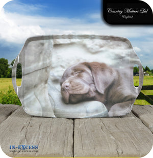 Country Matters Melamine Large Handled Carrying Tea Tray - 'Pup on Boot'
