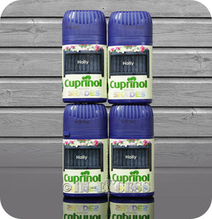 Cuprinol Garden Shades Holly Wood Paint Varnish For Sheds & Furniture - 50ml , 200ml, 600ml & 1.2 Litres